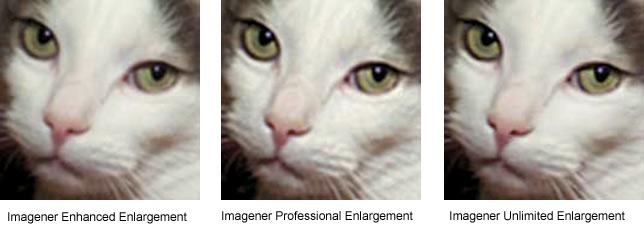 Рис. 2. Пример обработки той же фотографии с помощью программы Imagener