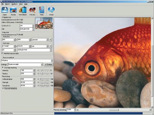 Рис. 5. Интерфейс PhotoZoom Professional