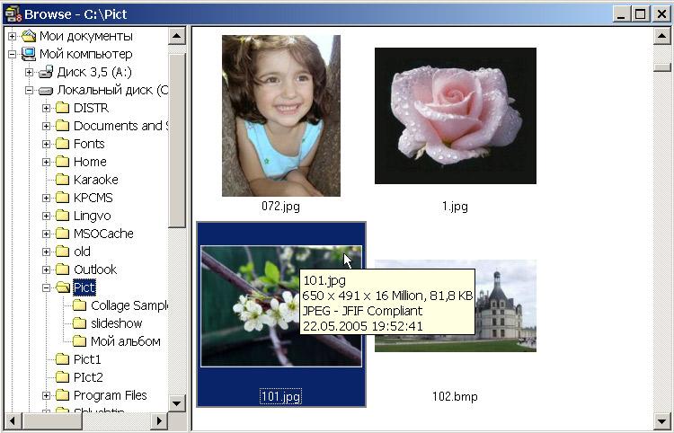 Рис. 1. Просмотр изображений в окне Browse