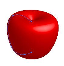 Рис. 40. Начальный вид ягоды