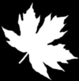 кленовый лист картинки черно белые