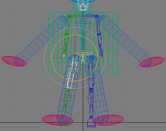 Рис. 21. Вращение правой бедренной кости в проекции Front