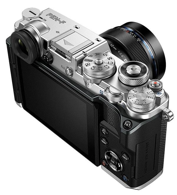 филлеров современные пленочные фотокамеры искусственных цветов сухоцветов